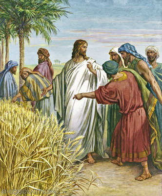 christ-and-disciples-in-grain-field