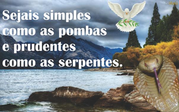 simples-como-as-pombas